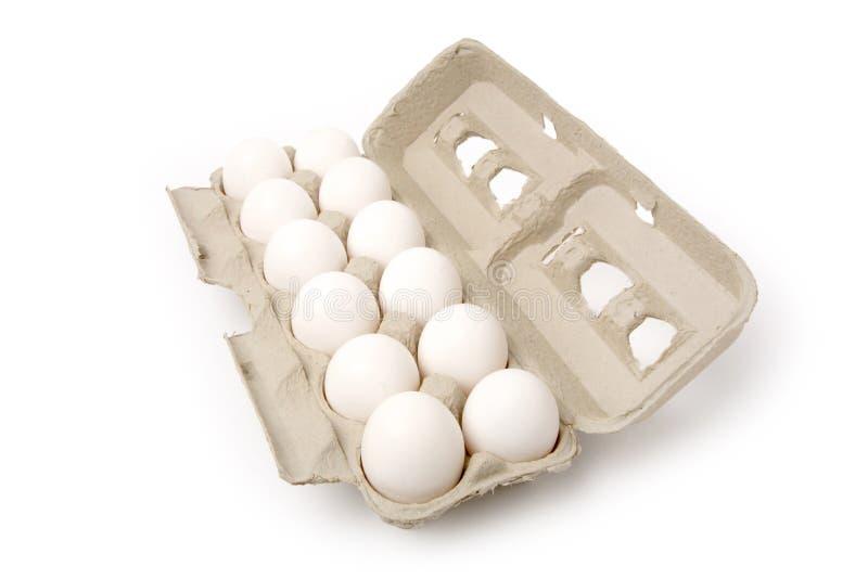 Witte eieren stock afbeelding