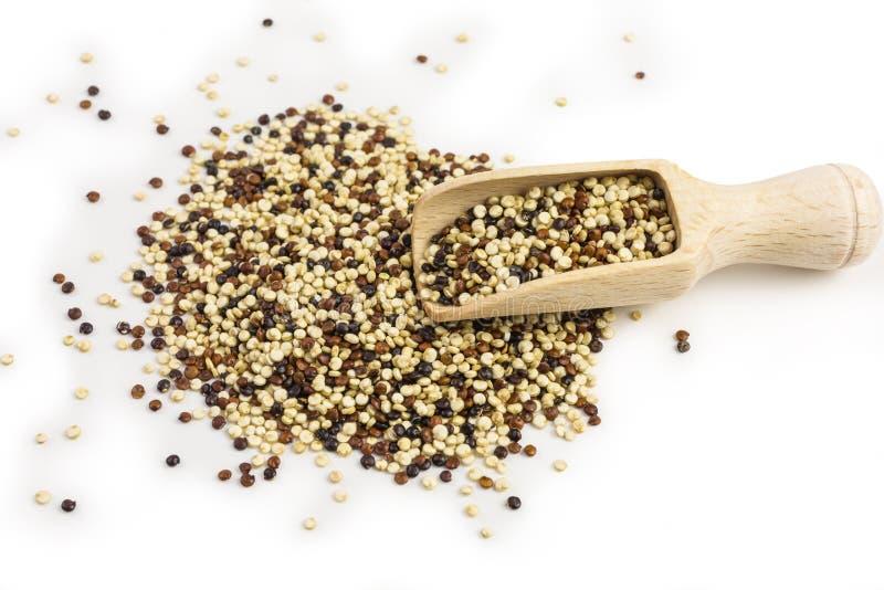 Witte en bruine quinoa royalty-vrije stock afbeelding