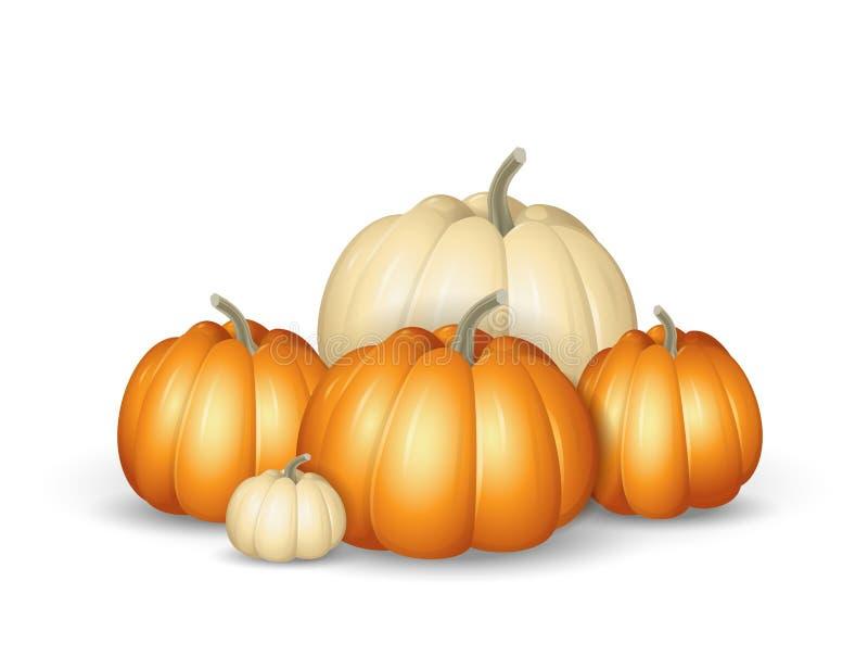 Witte en oranje pompoenen - beeldverhaal vectordieillustratie op witte achtergrond wordt geïsoleerd vector illustratie