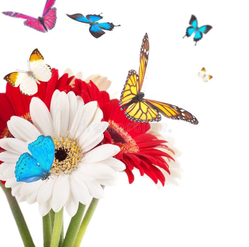 Witte en rode bloemen, boeket stock fotografie