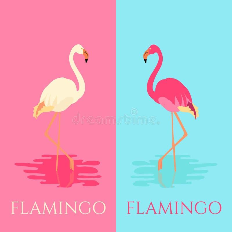 Witte en roze flamingovogels royalty-vrije illustratie