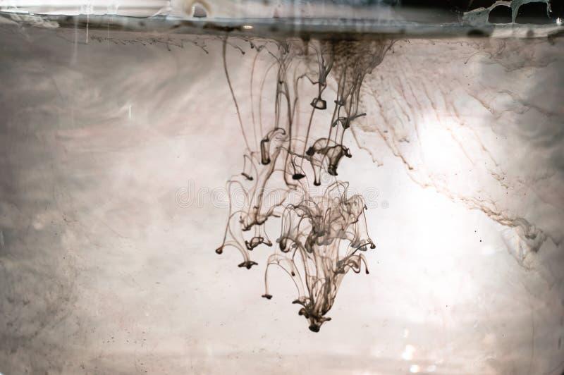 Witte en zwarte inkt in water Zonneschijnverlichting Dynamisch movemen stock fotografie