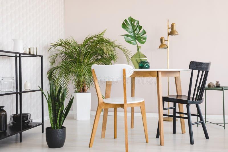 Witte en zwarte stoel bij houten lijst in eetkamerbinnenland met installaties en gouden lamp Echte foto stock illustratie