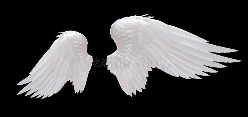 Witte engelenvleugel royalty-vrije stock foto's