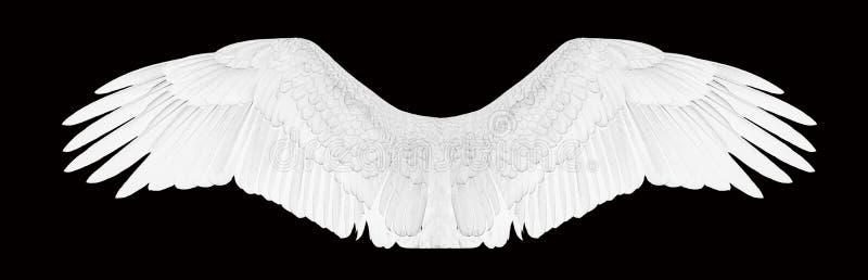 Witte engelenvleugels royalty-vrije stock fotografie