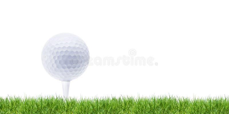 Witte golfball op T-stuk in groen royalty-vrije stock afbeelding
