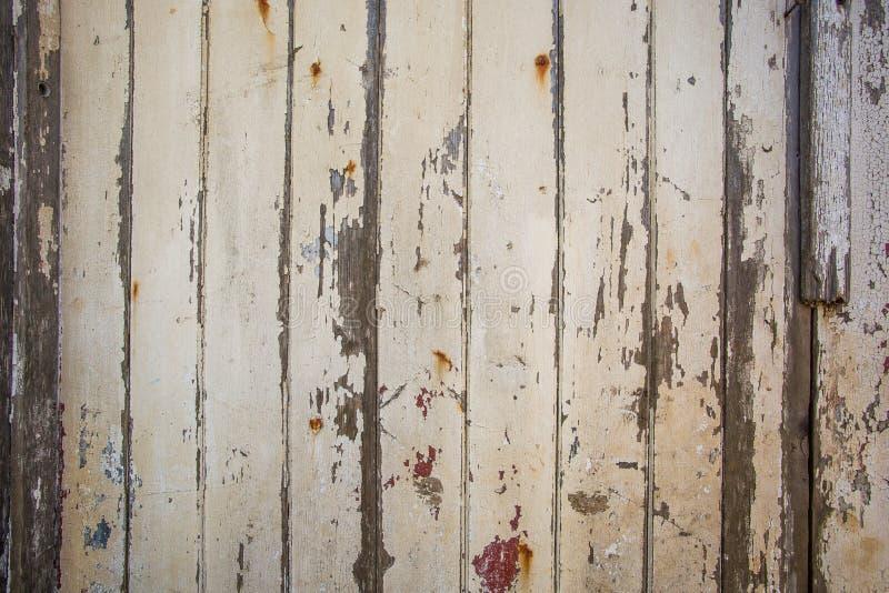 Witte/grijze houten textuurachtergrond met natuurlijke patronen royalty-vrije stock fotografie