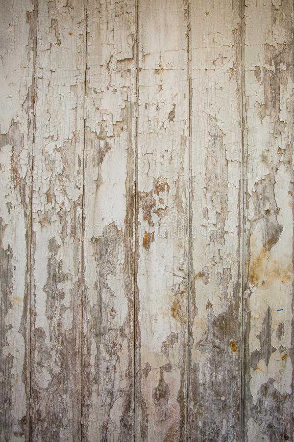 Witte/grijze houten textuurachtergrond met natuurlijke patronen stock afbeelding