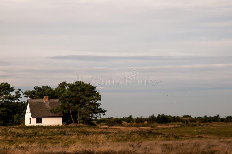 Witte Hause in klein bos II royalty-vrije stock afbeeldingen