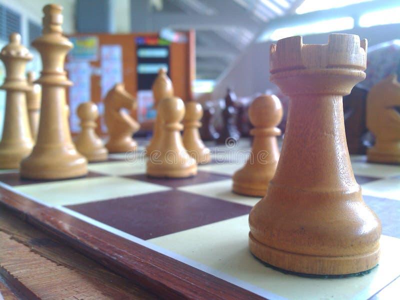 witte houten Chees stock fotografie
