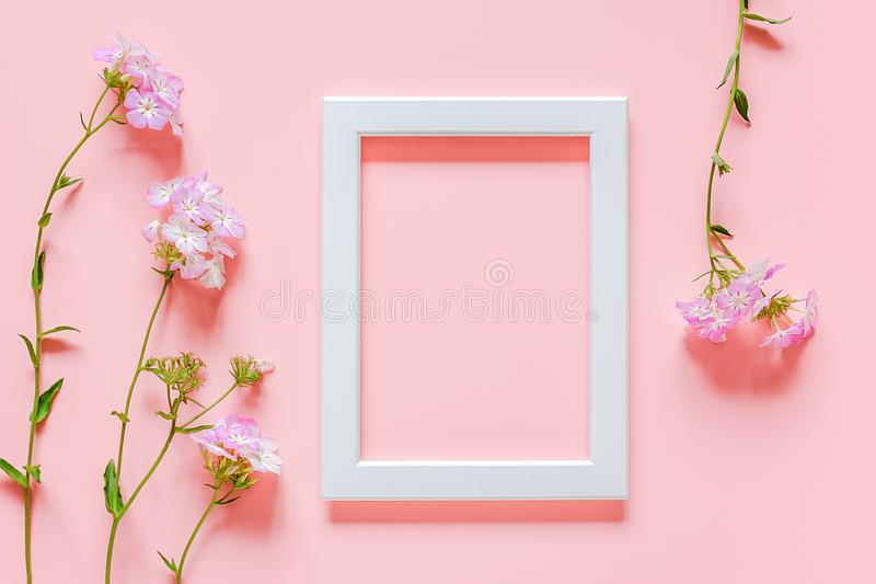 Witte houten omlijsting en bloemen op roze achtergrond met exemplaarruimte De creatieve Hoogste meningsvlakte legt Spot op Malpla royalty-vrije stock foto