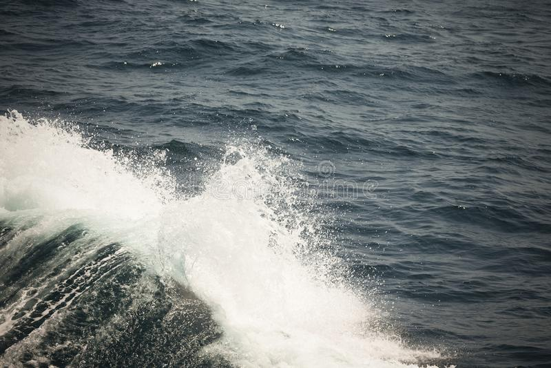 Witte kam van een overzeese golf Selectieve nadruk Ondiepe diepte van fie stock afbeeldingen