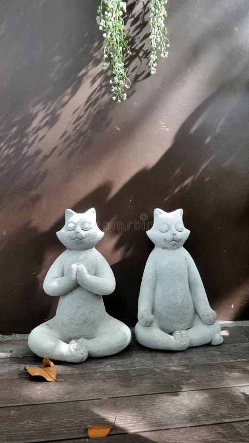 Witte kat twee op meditatiebeeldhouwwerk onder zacht licht en schaduw in de stille tuinhoek stock foto
