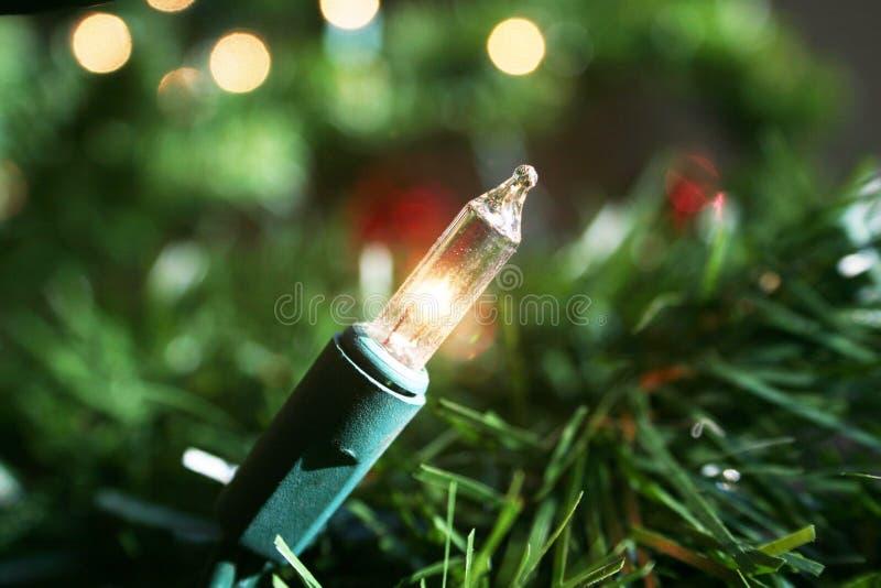 Witte Kerstboom Lichte Dichte Omhooggaand royalty-vrije stock fotografie