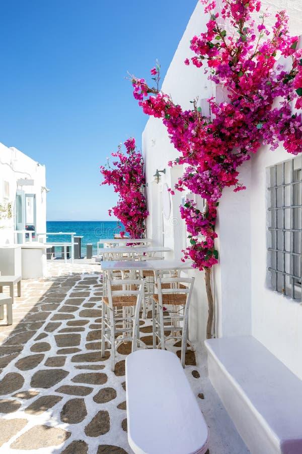Witte kleine steeg en huizen met rode bouganvilleabloemen in Paros-eiland stock fotografie