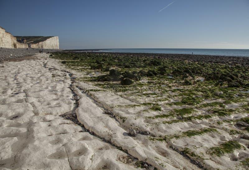 Witte klippen, groen zeewier en blauwe hemel - Zeven Zusters, East Sussex, Engeland, het UK royalty-vrije stock fotografie