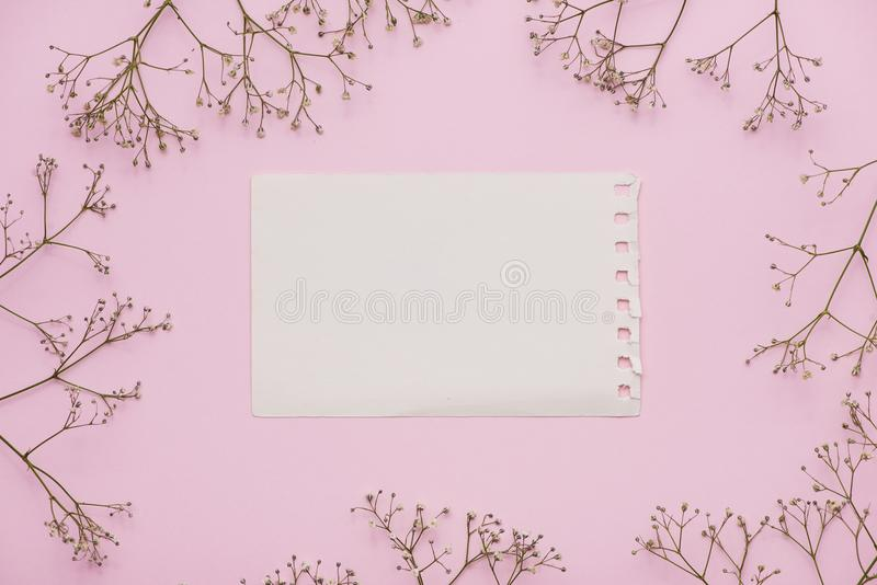 Witte lege kaart met pastelkleurbloemen en lint op roze bleke achtergrond, bloemenkader Creatieve groet, Uitnodiging en vakantie  royalty-vrije stock foto