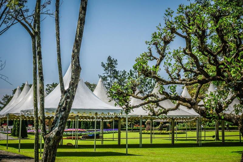Witte lege tent niemand op het groene gras met bloem en boom op de achtergrond - bogor van fotoindonesië royalty-vrije stock foto
