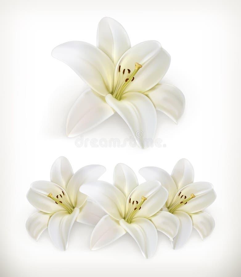 Witte leliepictogrammen royalty-vrije illustratie
