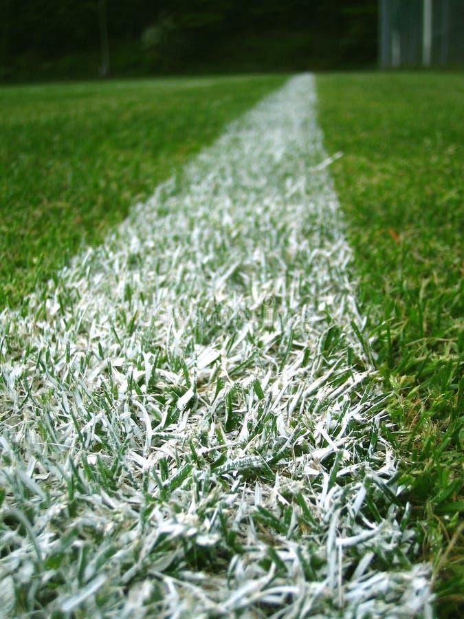 Download Witte lijn stock afbeelding. Afbeelding bestaande uit grassen - 29139