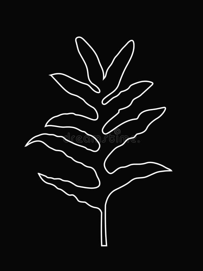 Witte Lijnkunst van Fern Leaf, Tropische Wildernisbladeren, de Vectorillustratie van Overzichtsbladeren, Witte Kleur op Zwarte Ac royalty-vrije illustratie