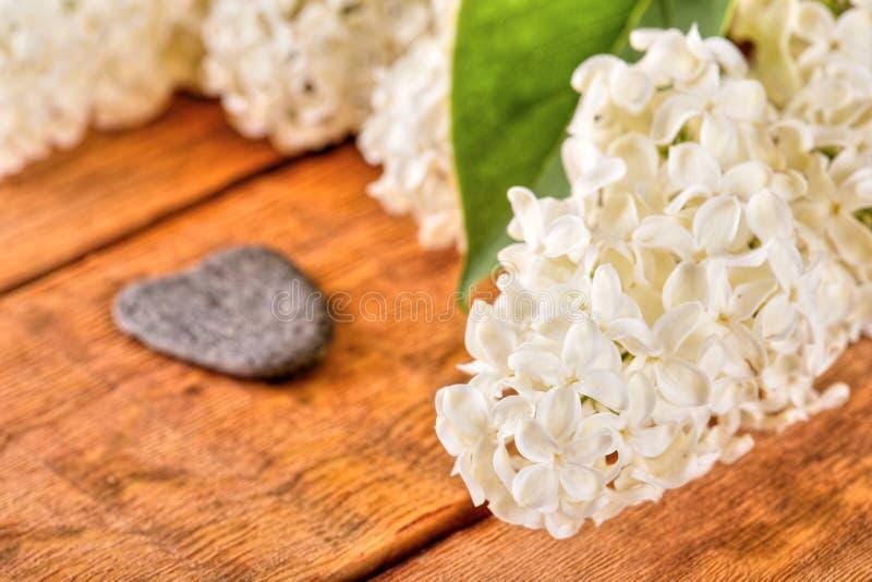 Witte lilac bloei op houten raad met hart gevormde steen royalty-vrije stock foto's