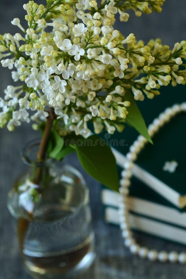 Witte Lilac Bloemen royalty-vrije stock fotografie