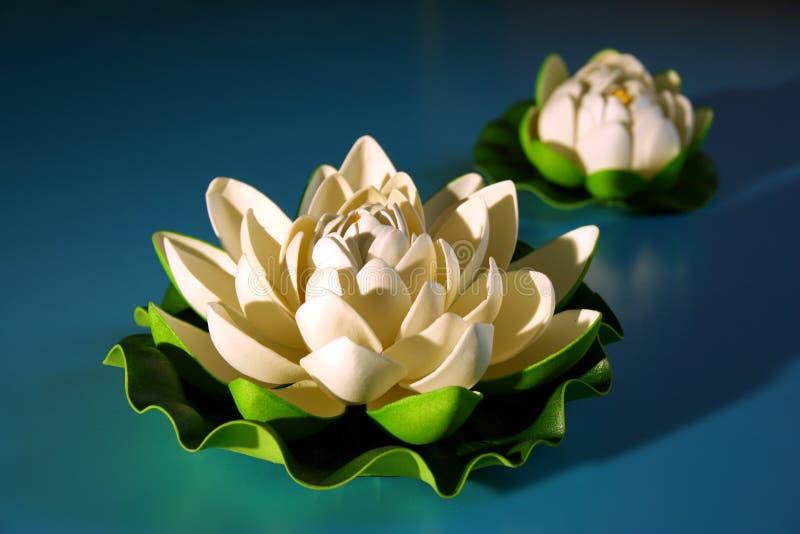 Witte lotusbloem met knop royalty-vrije stock afbeelding