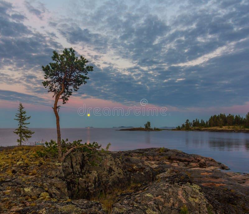 Witte nacht op meer Ladoga, Karelië, Rusland stock fotografie