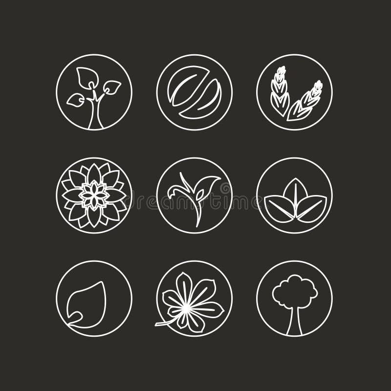 Witte natuurlijke symbolen - aard abstract element met blad, boom, bloem en aartje, bio organisch eenvoudig ontwerp in de cirkel stock illustratie