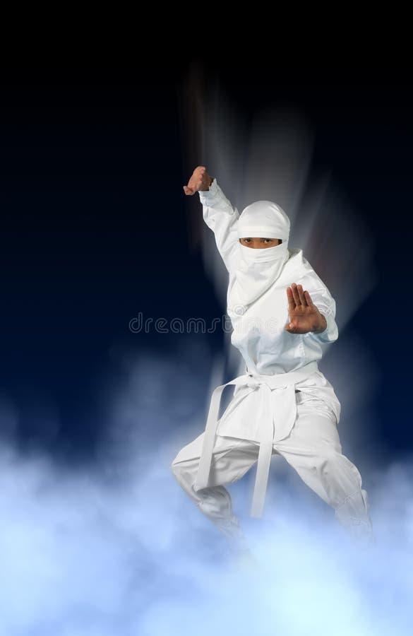 Witte Ninja royalty-vrije stock afbeeldingen