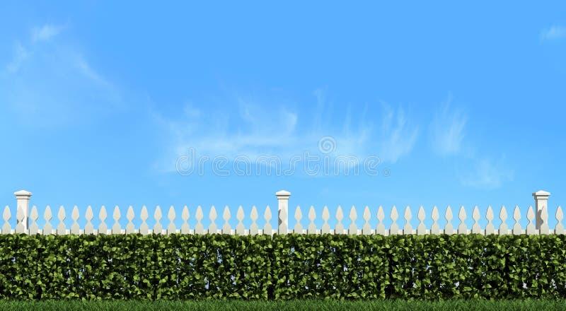 Witte omheining en haag op blauwe hemel stock illustratie