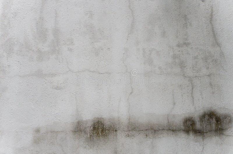 Witte oude muurachtergrond royalty-vrije stock foto's