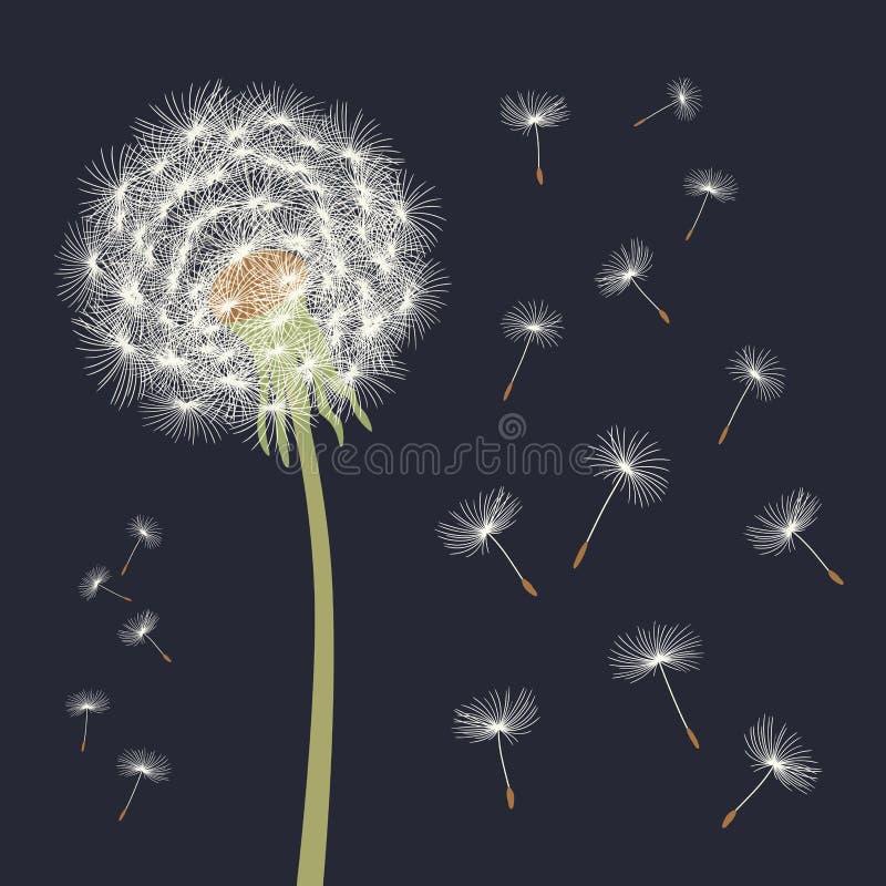 Witte paardebloem met vliegende zaden Vector illustratie royalty-vrije illustratie
