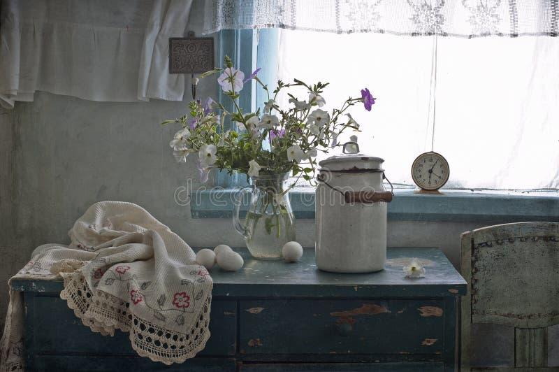 Witte petunia royalty-vrije stock afbeeldingen