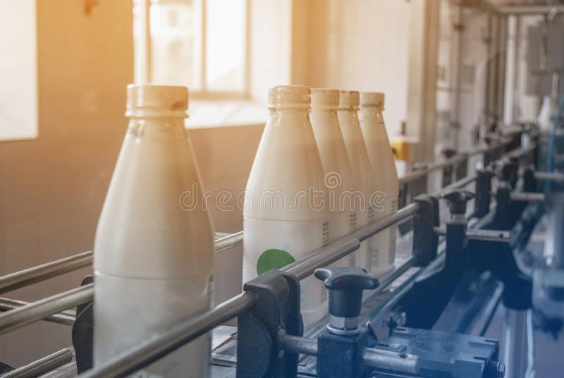 Witte plastic flessen met zuivelproduct op de productielijn Gebotteld op transportband stock afbeeldingen