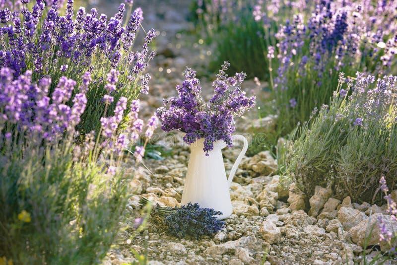 Witte pot met lavendel stock foto