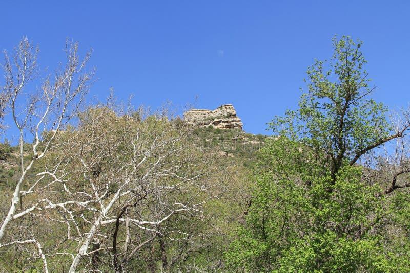 Witte Rotsvorming in Sedona Arizona royalty-vrije stock afbeeldingen