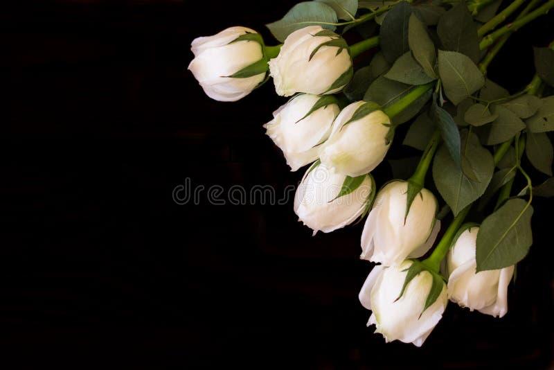 Witte rozen stock afbeelding