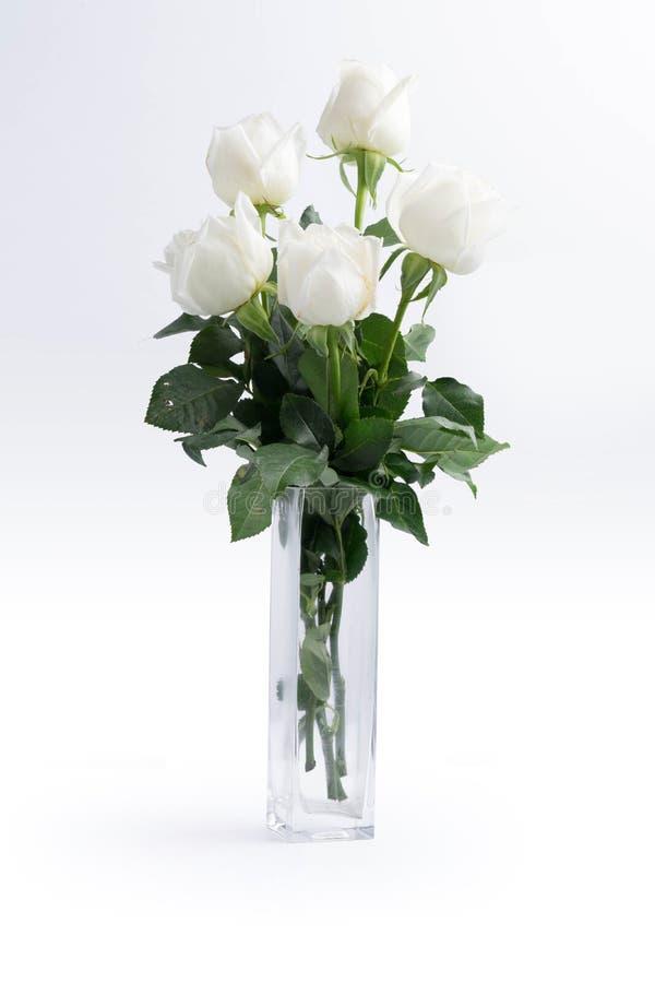 Witte rozen op een wit stock afbeelding