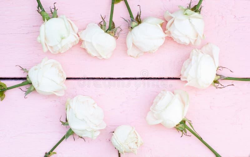 Witte rozen op roze houten achtergrond royalty-vrije stock afbeeldingen