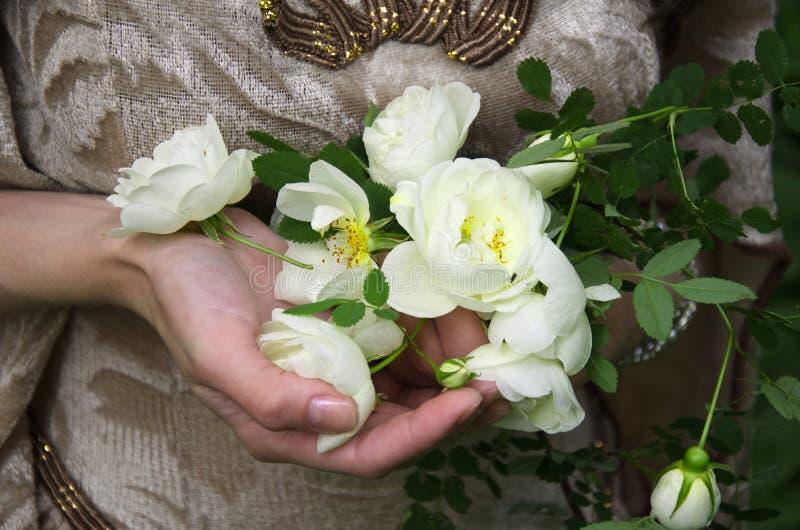 Witte rozen in vrouwelijke handen royalty-vrije stock foto