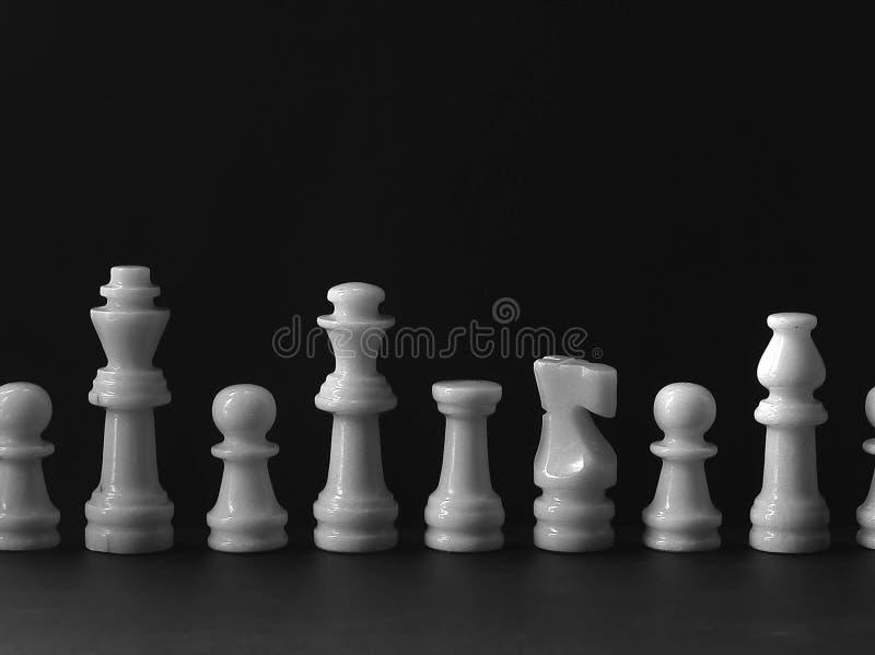 Witte Schaakreeks Stock Afbeeldingen