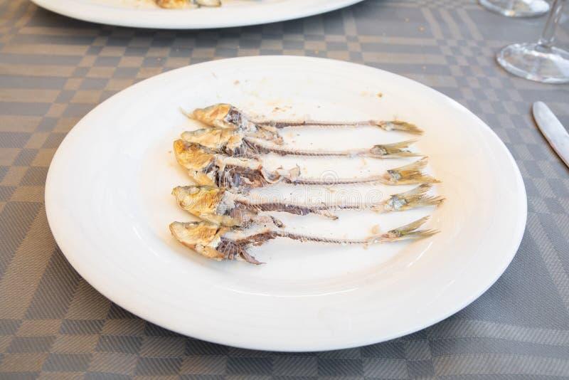 Witte schotel met fishbone van een groep sardines op een rij royalty-vrije stock foto