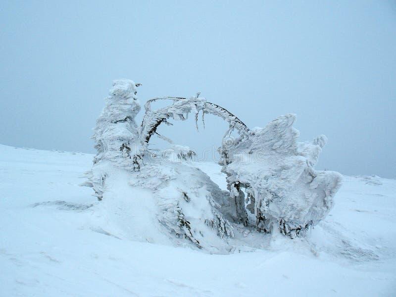 Witte sneeuw behandelde bergpieken op hoogte Koude de winterachtergrond royalty-vrije stock foto's