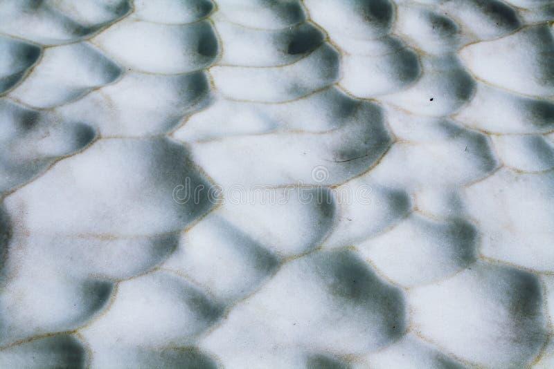 Witte sneeuwtextuur royalty-vrije stock afbeeldingen