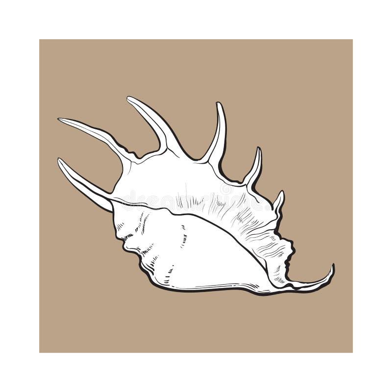 Witte spiraalvormige kroonslak overzeese shell, de geïsoleerde vectorillustratie van de schetsstijl stock illustratie