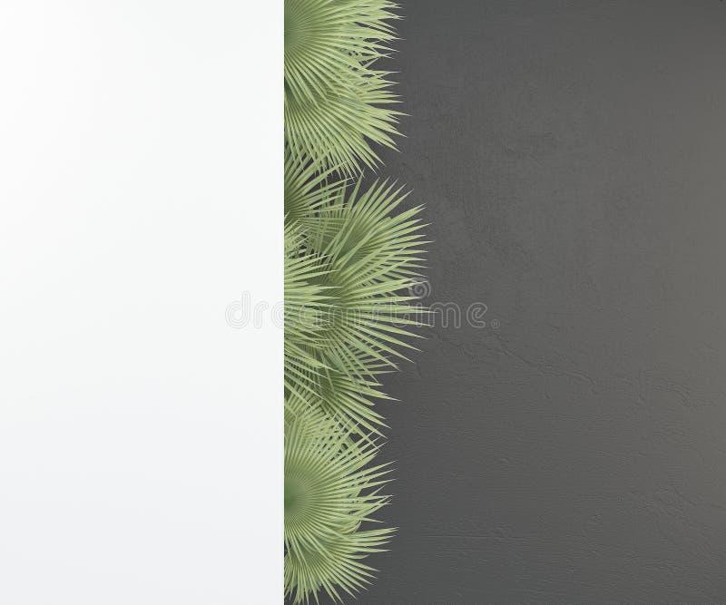 Witte spot omhoog backgraund op donkere muur met aard groene palmbladen het 3d teruggeven stock illustratie