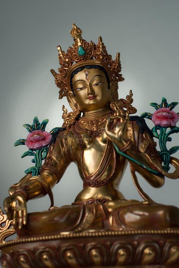 Witte Tara stock afbeeldingen