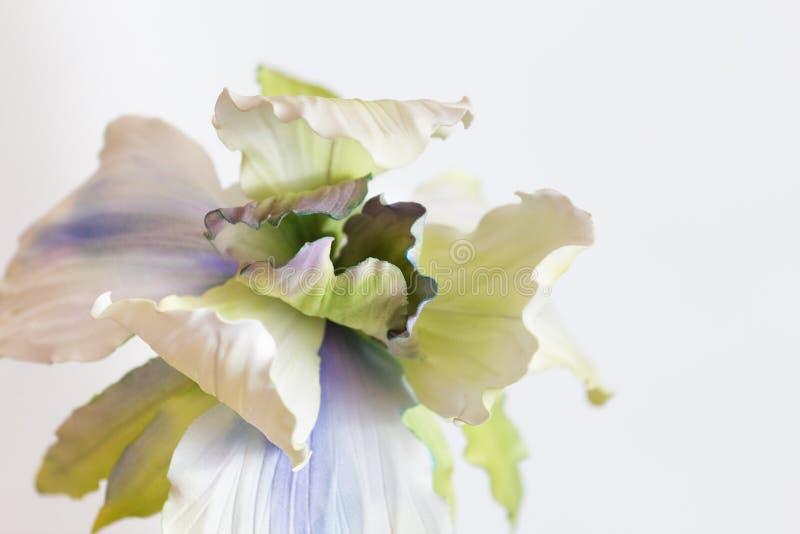 Witte textielbloem stock foto